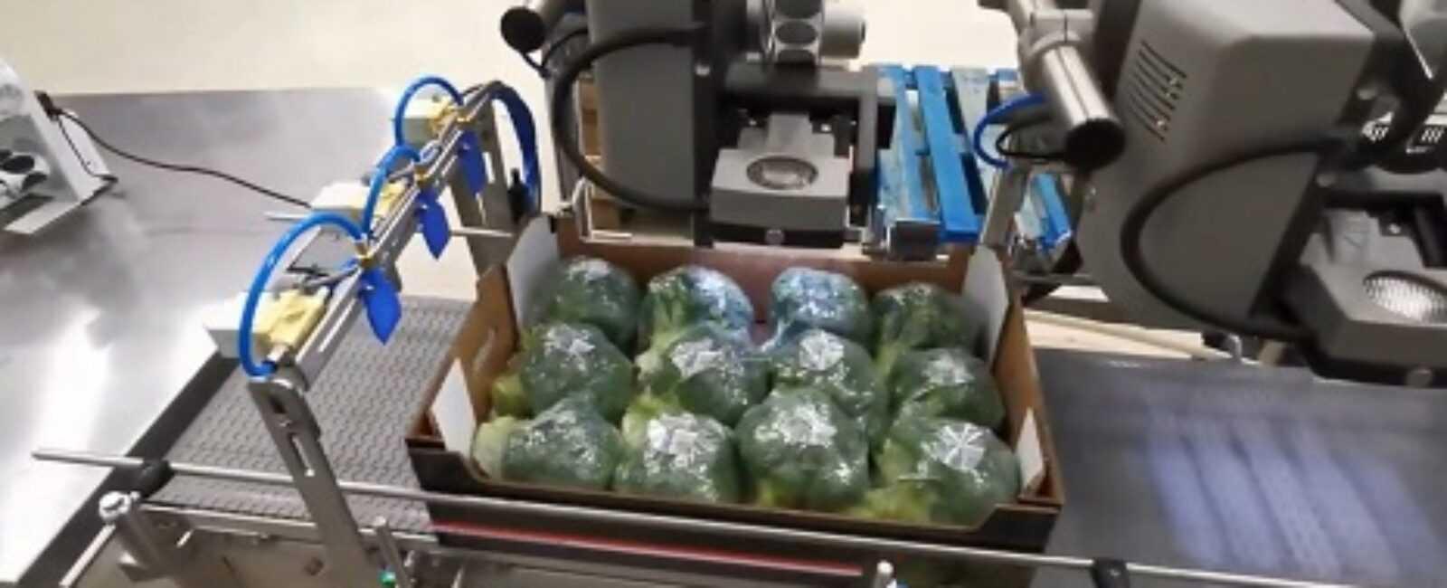 groenten etiketteren