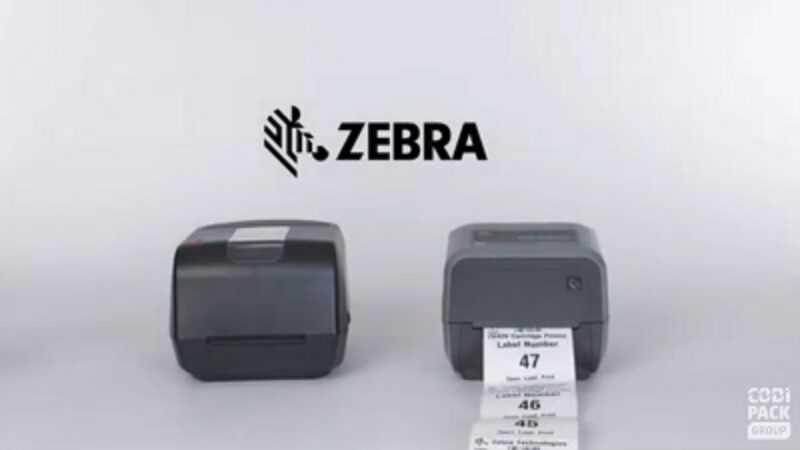 Zebra 420
