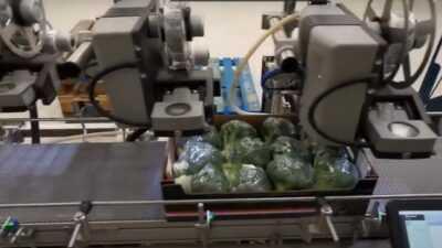 groenten labelen