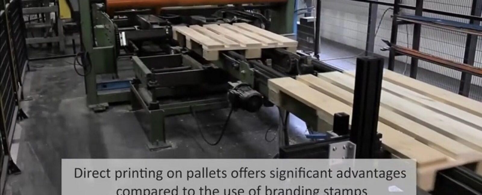 Coderen in houtsector