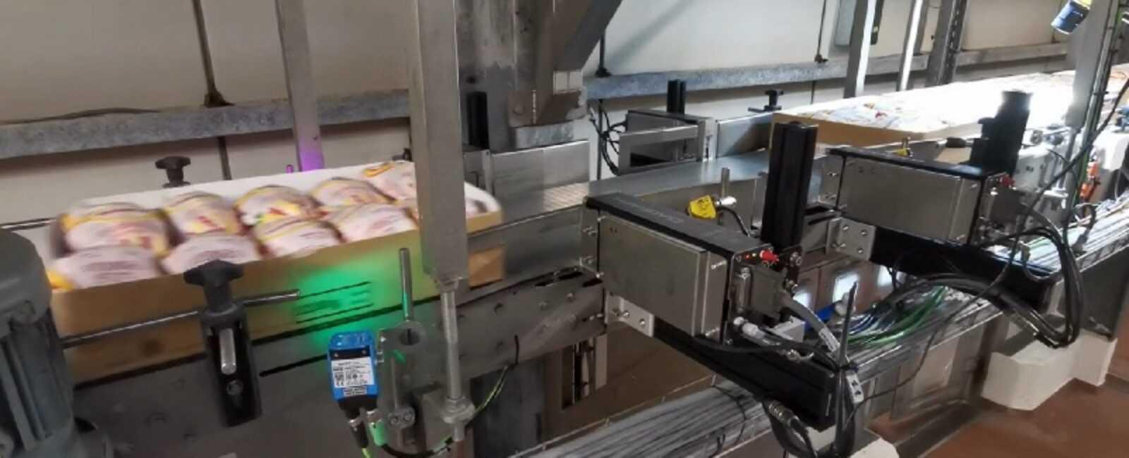 verpakkingsdozen in de voedingssector coderen